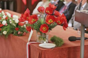 Chrzest tulipanów- Dowbor