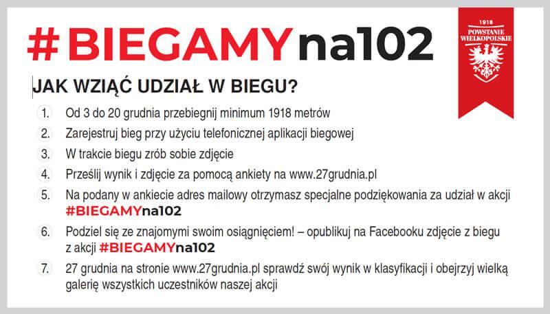 Powstanie Wielkopolskie - 102. Obchody Rocznicy - Powstaniena102